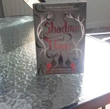 shadowandbone.jpg